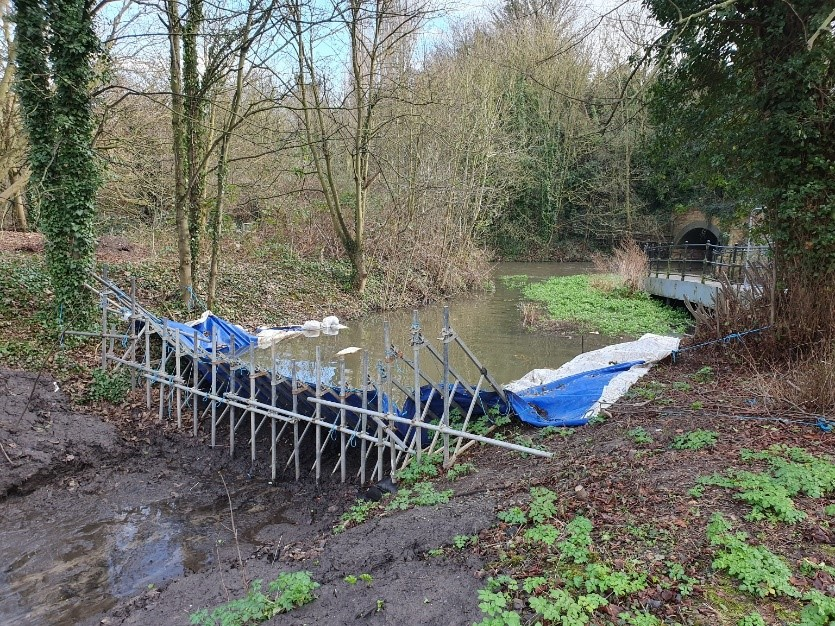 Temporary dam at upstream end of project site.